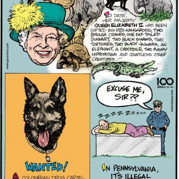 1. To date, her majesty Queen Elizabeth II has been gifted six red kangaroos, two brolga crane, one fat-tailed dunnart, two black swans, two tortoises, two black jaguars, an elephant, a crocodile, two pygmy hippopotami and countless other creatures! 2. A Colombian drug cartel put a $70,000 bounty on a drug-sniffing police dog named Sombra. 3. In Pennsylvania, it's illegal to sleep on a refrigerator.