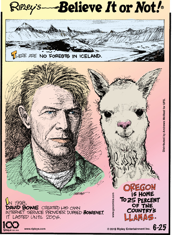 1. There are no forests in Iceland. 2. In 1998, David Bowie created his own internet service provider dubbed Bowienet. It lasted until 2006. 3. Oregon is home to 25 percent of the country's llamas.