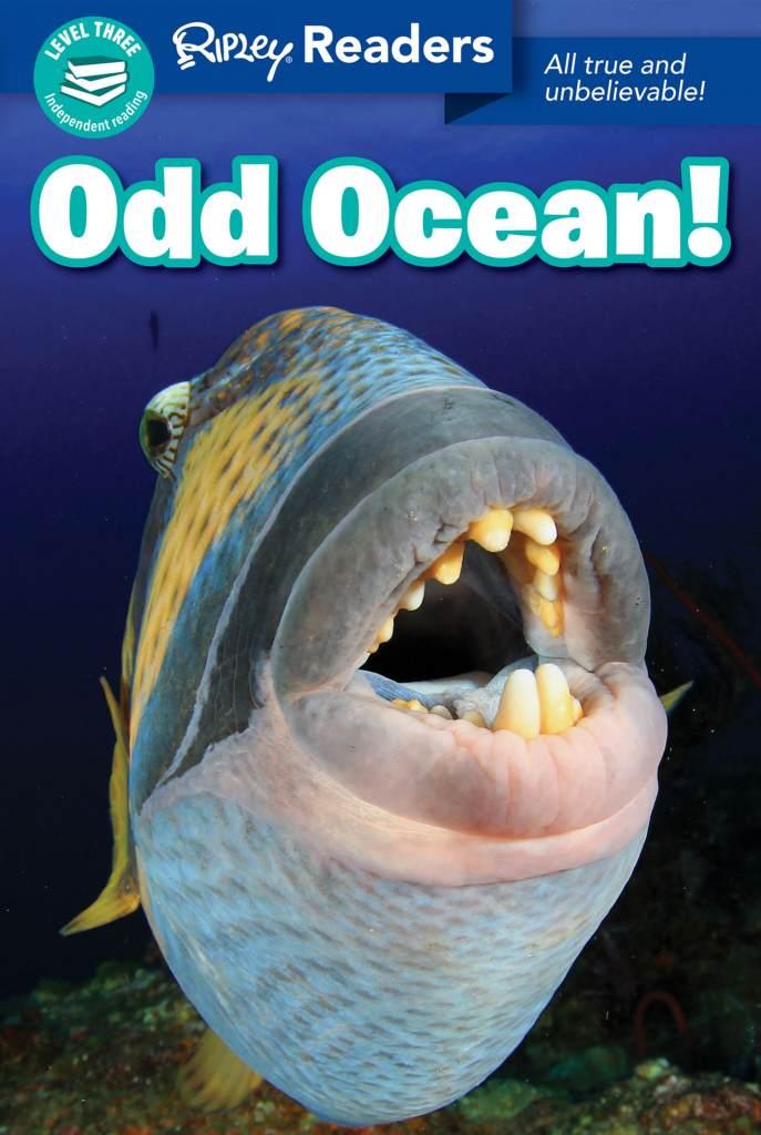 Odd Ocean Cover