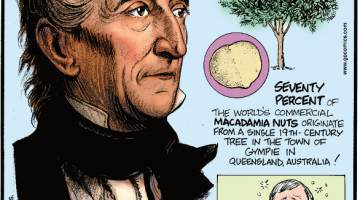 1. Two grandsons of John Tyler - 10th President of the United States and born in 1790 - are still alive! 2. Seventy percent of the world's commercial macadamia nuts originate from a single 19th-century tree in the town of Gympie in Queensland, Australia! 3. Brunch was first introduced in 1895 as a post-hangover meal!