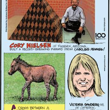 """1. Cory Nielsen of Phoenix, Arizona, built a record-breaking pyramid from 1,030,315 pennies! 2. A cross between a zebra and a donkey is called a """"zedonk""""! 3. Victoria Sanders, 58, of Catterick, North Yorkshire, U.K., was arrested for nagging her husband in 2018!"""