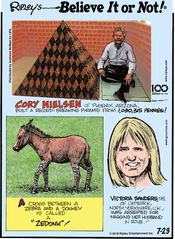 "1. Cory Nielsen of Phoenix, Arizona, built a record-breaking pyramid from 1,030,315 pennies! 2. A cross between a zebra and a donkey is called a ""zedonk""! 3. Victoria Sanders, 58, of Catterick, North Yorkshire, U.K., was arrested for nagging her husband in 2018!"