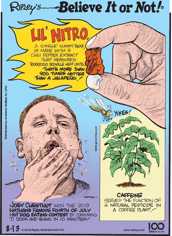 1. Lil' Nitro, a single gummy bear, is made with a chili pepper extract that measures 9,000,000 Scoville heat units. That's more than 900 times hotter than a jalapeno! 2. Joey Chestnut won the 2019 Nathan's Famous Fourth of July Hot Dog Eating Contest by consuming 71 dogs and buns in 10 minutes! 3. Caffeine serves the function of a natural pesticide in a coffee plant!