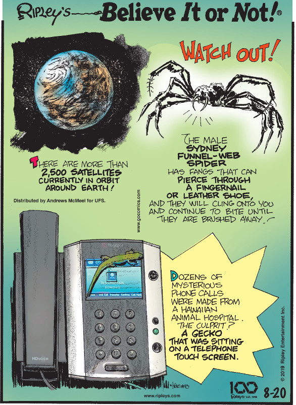 1. There are more than 2,500 satellites currently in orbit around Earth! 2. The male Sydney funnel-web spider has fangs that can pierce through a fingernail or leather shoe, and they will cling onto you and continue to bite until they are brushed away! 3. Dozens of mysterious phone calls were made from a Hawaiian animal hospital. The culprit? A gecko that was sitting on a telephone touch screen.
