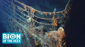 remains of the titanic