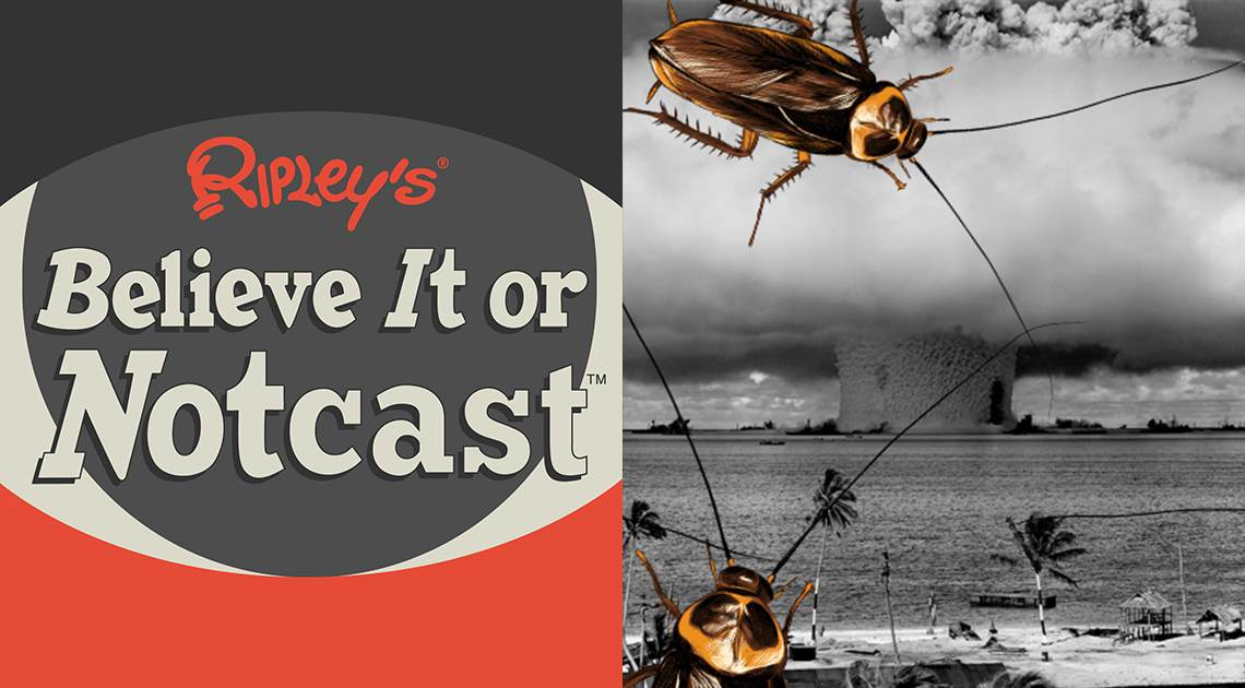 roaches vs nuclear armageddon