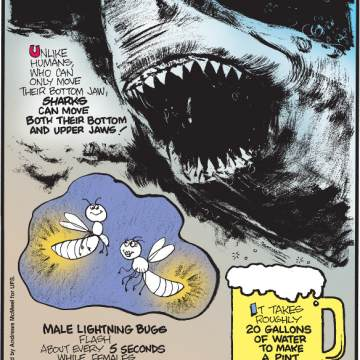 1. Unlike humans, who can only move their bottom jaw, sharks can move both their bottom and upper jaws! 2. Male lightning bugs flash about every 5 seconds while females flash about every 2 seconds! 3. It takes roughly 20 gallons of water to make a pint of beer.
