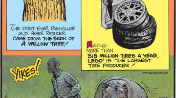 1. The first-ever painkiller and fever reducer came from the bark of a willow tree! 2. Making more than 318 million tires a year, Lego® is the largest tire producer! 3. Hippos kill more humans per year than any other mammal!