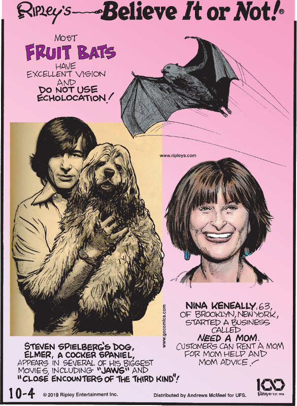 "1. Most fruit bats have excellent vision and do not use echolocation! 2. Steven Spielberg's dog, Elmer, a cocker spaniel, appears in several of his biggest movies, including ""Jaws"" and ""Close Encounters of the Third Kind""! 3. Nina Keneally, 63, of Brooklyn, New York, started a business called Need A Mom. Customers can rent a mom for mom help and mom advice!"