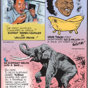 1. The first noodles consumed in space? Instant ramen noodles in vacuum packs! 2. Mike Tyson spent an estimated $2.2 million on a solid 24-karat-gold bathtub! 3. In 1922, a circus elephant named Tusko escaped and went on a rampage in Sedro-Woolley, Washington, where he broke into a bar and drank an entire batch of sour mash whiskey!