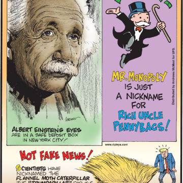 "1. Albert Einstein's eyes are in a safe deposit box in New York City! 2. Mr. Monopoly is just a nickname for Rich Uncle Pennybags! 3. Scientists have nicknamed the flannel moth caterpillar the ""Trumpapillar"" for the appearance of its venomous barbed hairs!"