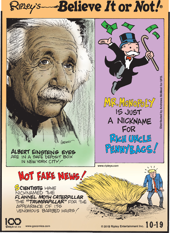 """1. Albert Einstein's eyes are in a safe deposit box in New York City! 2. Mr. Monopoly is just a nickname for Rich Uncle Pennybags! 3. Scientists have nicknamed the flannel moth caterpillar the """"Trumpapillar"""" for the appearance of its venomous barbed hairs!"""