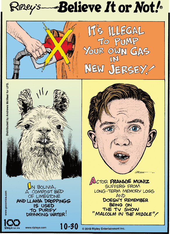 """1. It's illegal to pump your own gas in New Jersey! 2. In Bolivia, a compost bed of limestone and llama droppings is used to purify drinking water! 3. Actor Frankie Muniz suffers from long-term memory loss and doesn't remember being on the TV show """"Malcolm in the Middle""""!"""