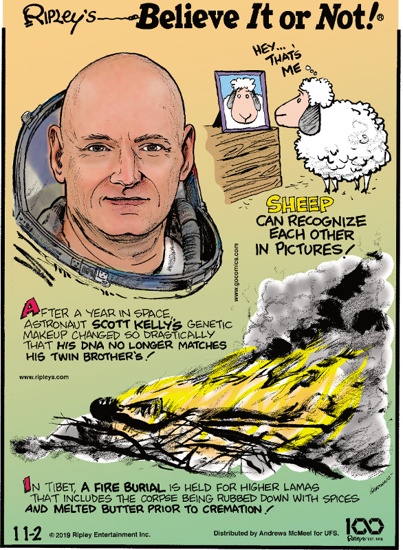 1. After a year in space, astronaut Scott Kelly's genetic makeup changed so drastically that his DNA no longer matches his twin brother's! 2. Sheep can recognize each other in pictures! 3. In Tibet, a fire burial is held for higher lamas that includes the corpse being rubbed down with spices and melted butter prior to cremation!