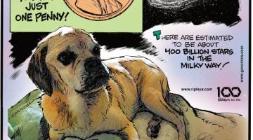 1. It costs the U.S. Mint 2.06 cents to make just one penny! 2. There are estimated to be about 400 billion stars in the Milky Way! 3. Marley, a 12-year-old puggle from Davenport, Florida, went missing on November 16, 2018, and was found seven months later on June 28, 2019! Making a bed behind bushes in a parking lot, Marley survived off food scraps from visitors and water from a truck-washing station. When Marley was reported found, it took his owners 12 hours to catch him!