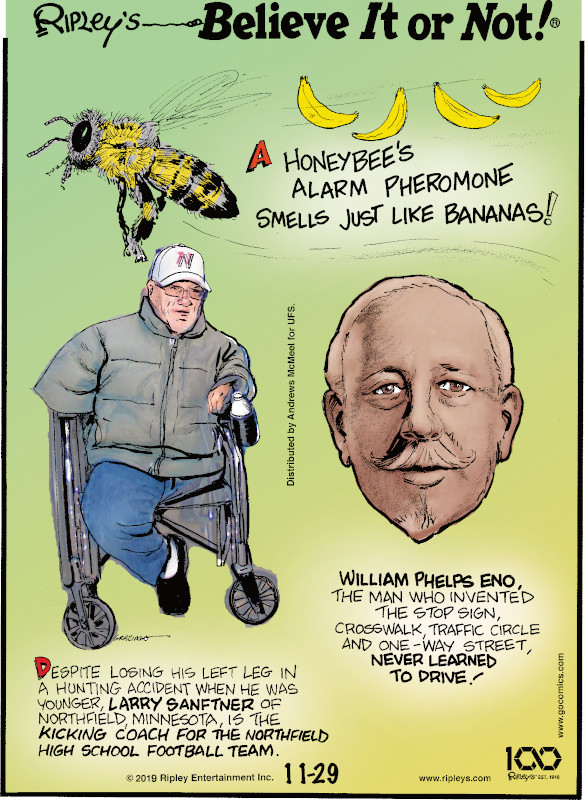 1. A honeybee's alarm pheromone smells just like bananas! 2. Despite losing his left left in a hunting accident when he was younger, Larry Sanftner of Northfield, Minnesota, is the kicking coach for the Northfield High School football team. 3. William Phelps Eno, the man who invented the stop sign, crosswalk, traffic circle and one-way street, never learned to drive!