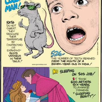 """1. Rats do not sweat. They regulate their temperature by constricting or expanding blood vessels in their tails! 2. 526 - the number of teeth removed from the mouth of a seven-year-old in India! 3. It took 600 artists six years to animate Disney's """"Sleeping Beauty""""!"""