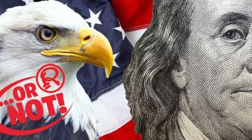 Bald eagle and Benjamin Franklin