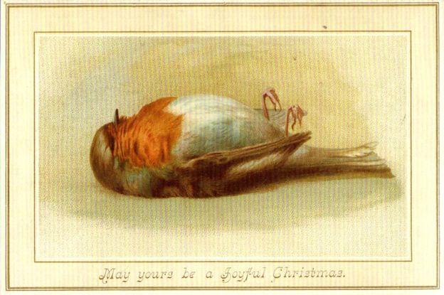 dead bird christmas card