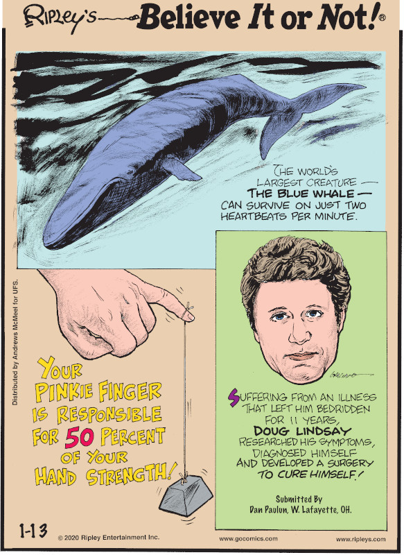 1. The world's largest creature - the blue whale - can survive on just two heartbeats per minute. 2. Your pinkie finger is responsible for 50 percent of your hand strength! 3. Suffering from an illness that left him bedridden for 11 years, Doug Lindsay researched his symptoms, diagnosed himself and developed a surgery to cure himself! Submitted by Dan Paulun, W. Lafayette, OH.