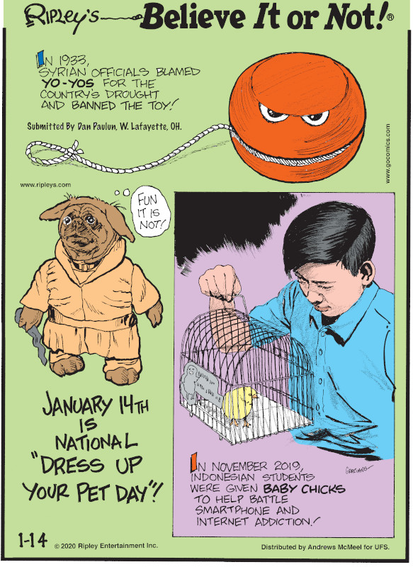 """1. In 1933, Syrian officials blamed yo-yos for the country's drought and banned the toy! Submitted by Dan Paulun, W. Lafayette, OH. 2. January 14th is National """"Dress Up Your Pet Day""""! 3. In November 2019, Indonesian students were given baby chicks to help battle smartphone and internet addiction!"""