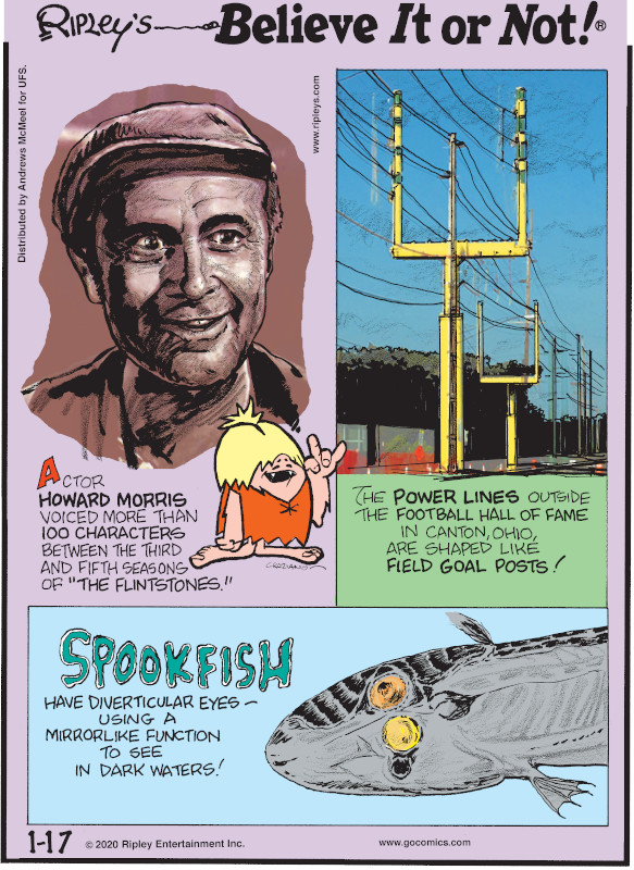 "1. Actor Howard Morris voiced more than 100 characters between the third and fifth seasons of ""The Flintstones."" 2. The power lines outside the Football Hall of Fame in Canton, Ohio, are shaped like field goal posts! 3. Spookfish have diverticular eyes - using a mirrorlike function to see in dark waters!"