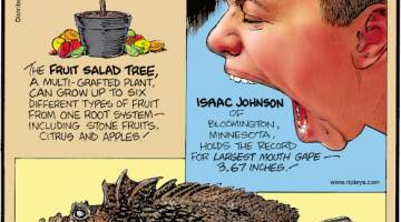 1. The fruit salad tree, a multi-grafted plant, can grow up to six different types of fruit from one root system - including stone fruits, citrus and apples! 2. Isaac Johnson of Bloomington, Minnesota, holds the record for largest mouth gape - 3.67 inches! 3. With venom-injecting spines on their dorsal fins, stonefish are the world's most venomous fish!