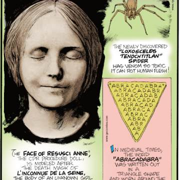 "1. The newly discovered ""loxosceles tenochtitlan"" spider has venom so toxic it can rot human flesh! 2. The Face of Resusci Anne®, the CPR procedure doll, is modeled after the death mask of l'inconnue de la Seine, the body of an unknown girl pulled out of the River Seine in the late 1800s. 3. In medieval times, the word ""abracadabra"" was written out in a triangle shape and worn around the neck as an amulet to ward off deadly diseases!"