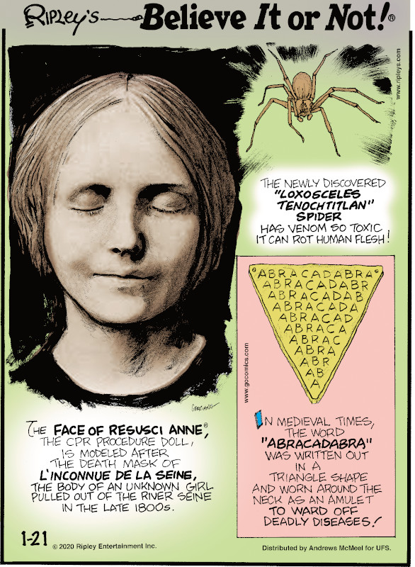 "1. The newly discovered ""loxosceles tenochtitlan"" spider has venom so toxic it can rot human flesh! 2. The Face of Resusci Anne®, the CPR procedure doll, is modeled after the death mask of l`inconnue de la Seine, the body of an unknown girl pulled out of the River Seine in the late 1800s. 3. In medieval times, the word ""abracadabra"" was written out in a triangle shape and worn around the neck as an amulet to ward off deadly diseases!"