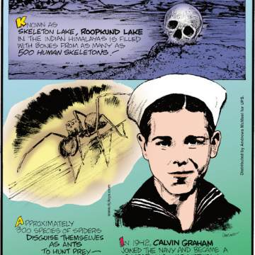 1. Known as Skeleton Lake, Roopkund Lake in the Indian Himalayas is filled with bones from as many as 500 human skeletons! 2. Approximately 300 species of spiders disguise themselves as ants to hunt prey - it's called myrmecomorphy. 3. In 1942, Calvin Graham joined the Navy and became a 13-year-old war veteran, dishonorably discharged when his mother turned him in!