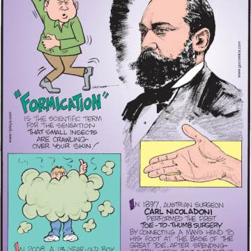 "1. ""Formication"" is the scientific term for the sensation that small insects are crawling over your skin! 2. In 2008, a 13-year-old boy in Florida, was arrested for ""excessive farting"" during class! 3. In 1897, Austrian surgeon Carl Nicoladoni performed the first toe-to-thumb surgery by connecting a man's hand to his foot at the base of the great toe. After spending several weeks bent over during the connection to improve the success rate, the surgeon cut the toe from the foot!"