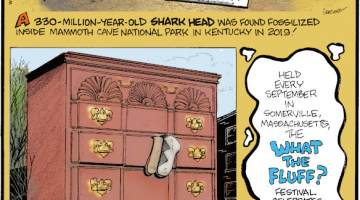 """1. A 330-million-year-old shark head was found fossilized inside Mammoth Cave National Park in Kentucky in 2019! 2. Once known as the """"Bureau of Information"""" in 1926, the High Point Chest of Drawers in North Carolina is a larger-than-life three-story dresser with two six-foot-long mismatched socks hanging out of it - it's actually an office building! 3. Held every September in Somerville, Massachusetts, the What the Fluff? Festival celebrates the birthplace of the confection."""