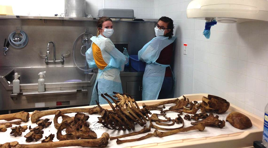 body farm researchers
