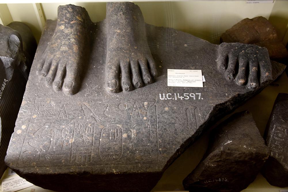 hermonthis feet