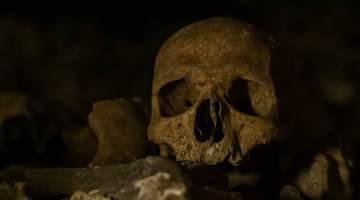 Catacombs Culture