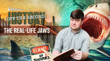 Jaws History Off the Record