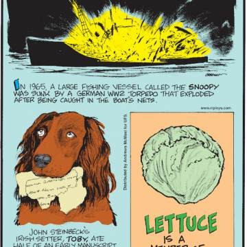 """1. In 1965, a large fishing vessel called the Snoopy was sunk by a German WW2 torpedo that exploded after being caught in the boat's nets. 2. John Steinbeck's Irish setter, Toby, ate half of an early manuscript of """"Of Mice and Men"""" - devouring two months of work! 3. Lettuce is a member of the sunflower family."""