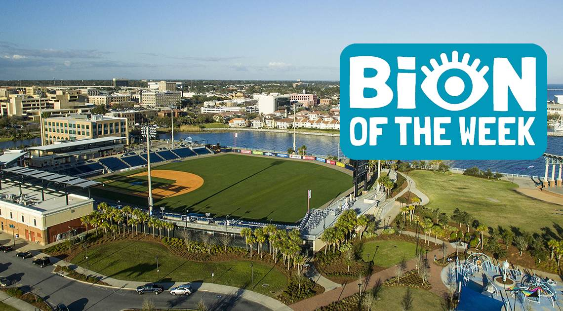 bion of the week baseball stadium
