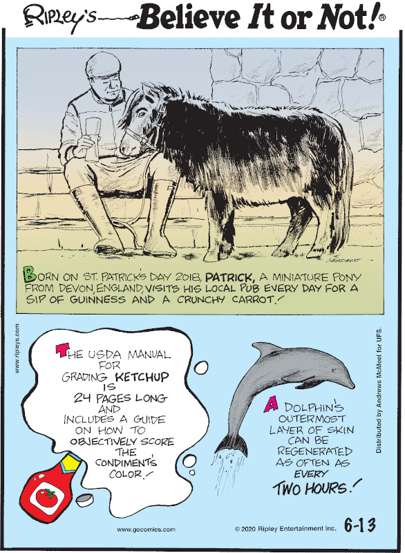 1. Born on St. Patrick's Day 2018, Patrick, a miniature pony from Devon, England, visits his local pub every day for a sip of Guinness and a crunchy carrot! 2. The USDA manual for grading ketchup is 24 pages long and includes a guide on how to objectively score the condiment's color! 3. A dolphin's outermost layer of skin can be generated as often as every two hours!