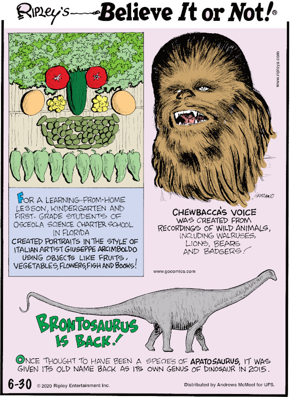 1. For a learning-from-home lesson, kindergarten and first-grade students of Osceola Science Charter School in Florida created portraits in the style of Italian artist Giuseppe Arcimboldo using objects like fruits, vegetables, flowers, fish and books! 2. Chewbacca's voice was created from recordings of wild animals, including walruses, lions, bears and badgers! 3. Once thought to have been a species of Apatosaurus, it was given its old name back as its own genus of dinosaur in 2015.