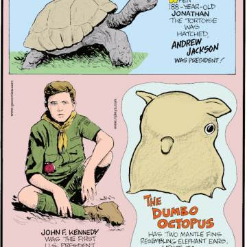 1. When 188-year-old Jonathan the tortoise was hatched, Andrew Jackson was president! 2. John F. Kennedy was the first U.S. President who was a boy scout as a child. 3. The Dumbo octopus has two mantle fins resembling elephant ears hence its Disney-inspired name!