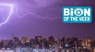 lightning BION of the week