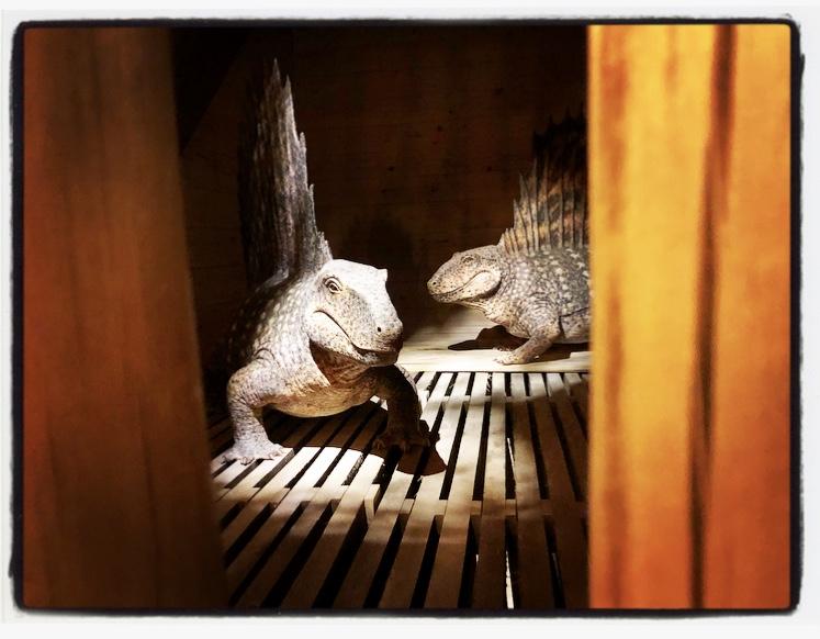 Ark Dinos