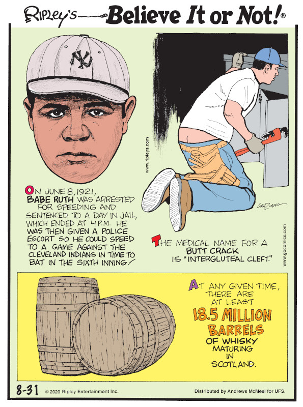"""1. On June 8, 1921, Babe Ruth was arrested for speeding and sentenced to a day in jail, which ended at 4 p.m. He was then given a police escort so he could speed to a game against the Cleveland Indians in time to bat in the sixth inning! 2. The medical name for a butt crack is """"intergluteal cleft."""" 3. At any given time, there are at least 18.5 million barrels of whiskey maturing in Scotland."""
