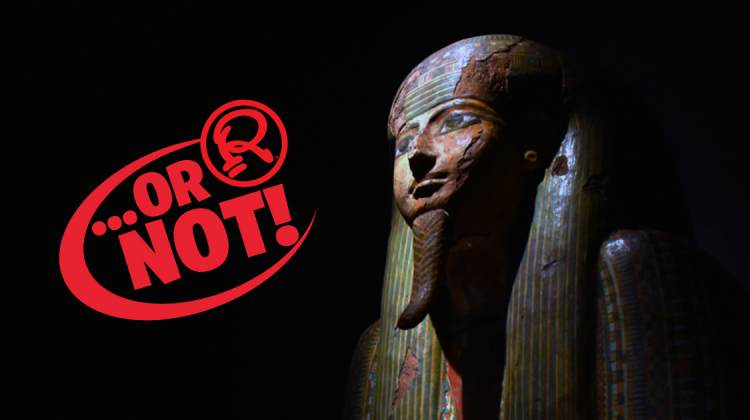 Curse of the Pharaohs OR NOT