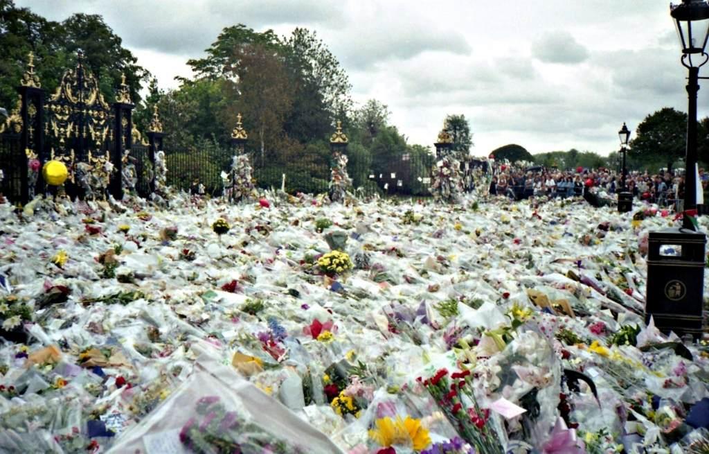 Princess Diana flowers