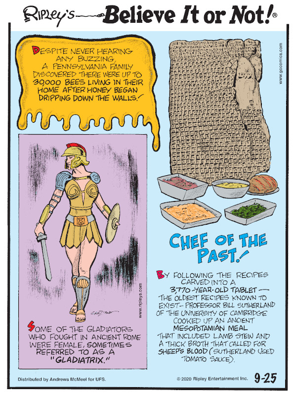 """1. Despite never hearing any buzzing, a Pennsylvania family discovered there were up to 30,000 bees living in their home after honey began dripping down the walls! 2. Some of the gladiators who fought in ancient Rome were female, sometimes referred to as a """"gladiatrix."""" 3. Chef of the Past! By following the recipes carved into a 3,770-year-old tablet - the oldest recipes known to exist - Professor Bill Sutherland of the University of Cambridge cooked up an ancient Mesopotamian meal that included lamb stew and a thick broth that called for sheep's blood (Sutherland used tomato sauce)."""