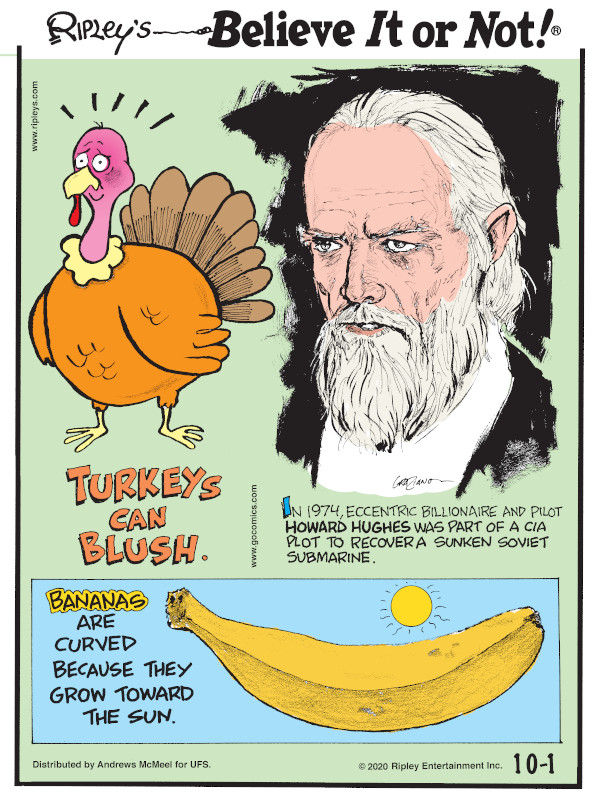1. Turkeys can blush. 2. In 1974, eccentric billionaire and pilot Howard Hughes was part of a CIA plot to recover a sunken Soviet submarine. 3. Bananas are curved because they grow toward the sun.