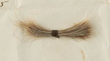 A lock of Lincoln's Hair