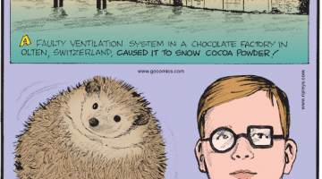 """1. A faulty ventilation system in a chocolate factory in Olten, Switzerland, caused it to snow cocoa powder! 2. Hedgehogs float! 3. Max Siedentopf, a German-Namibian artist, set up a sound installation that uses solar power to play Toto's """"Africa"""" on an endless loop in the Namib Desert."""